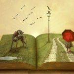 boek verbeelding